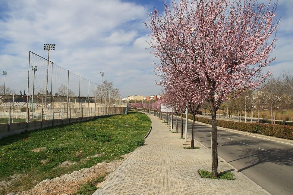 Circuit_Cardio_Protegit_Zona_Esportiva_3